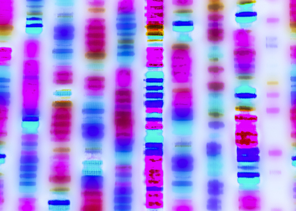 Sequence Me: Taking Personal Genomics Mainstream