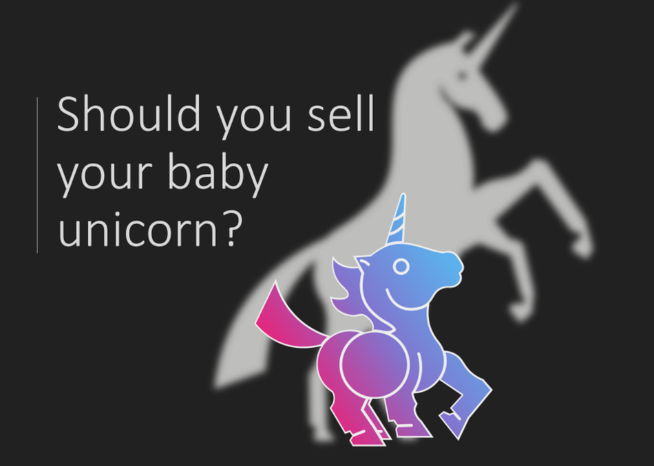 Should You Sell Your Baby Unicorn?