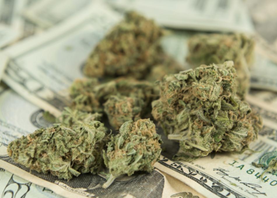 Silicon Valley 2.0: Cannabis Startups
