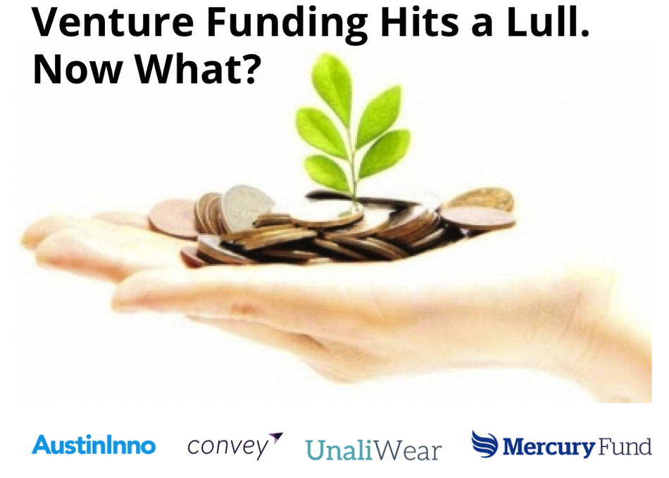 Venture Funding Hits a Lull. Now What?