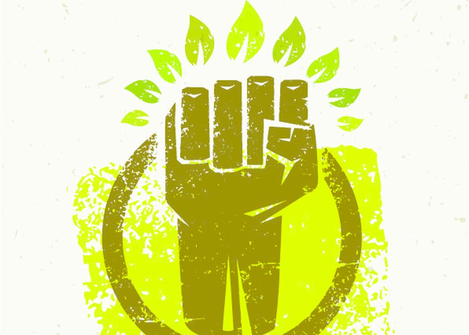 Algae, Not Animals: The Plant-Based Revolution