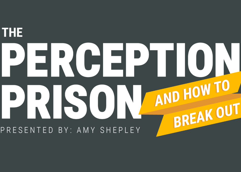 The Perception Prison and How to Break Out