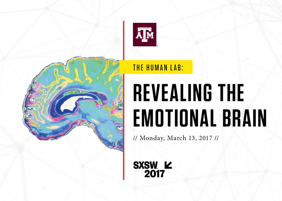 The Human Lab: Revealing the Emotional Brain