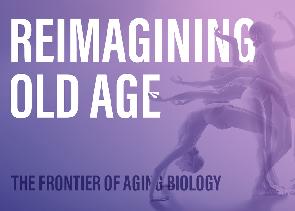 Reimagining Old Age: The Frontier of Aging Biology