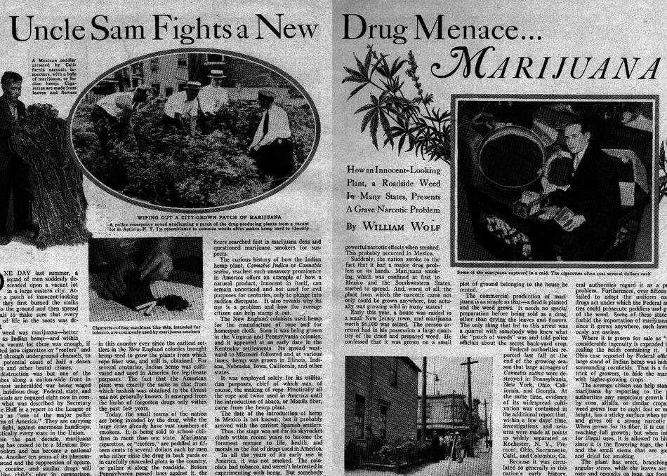 Reporters' Perspectives on Marijuana Legalization